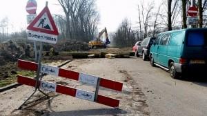 Bomenkap populieren zijstraat Beverwaardseweg