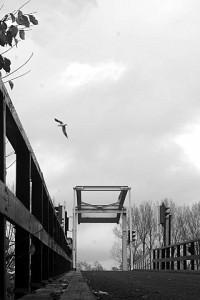 Toegangsbrug tot het eiland van Brienenoord