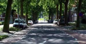 Roelantweg in Oud IJsselmonde